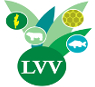 Logo lvv